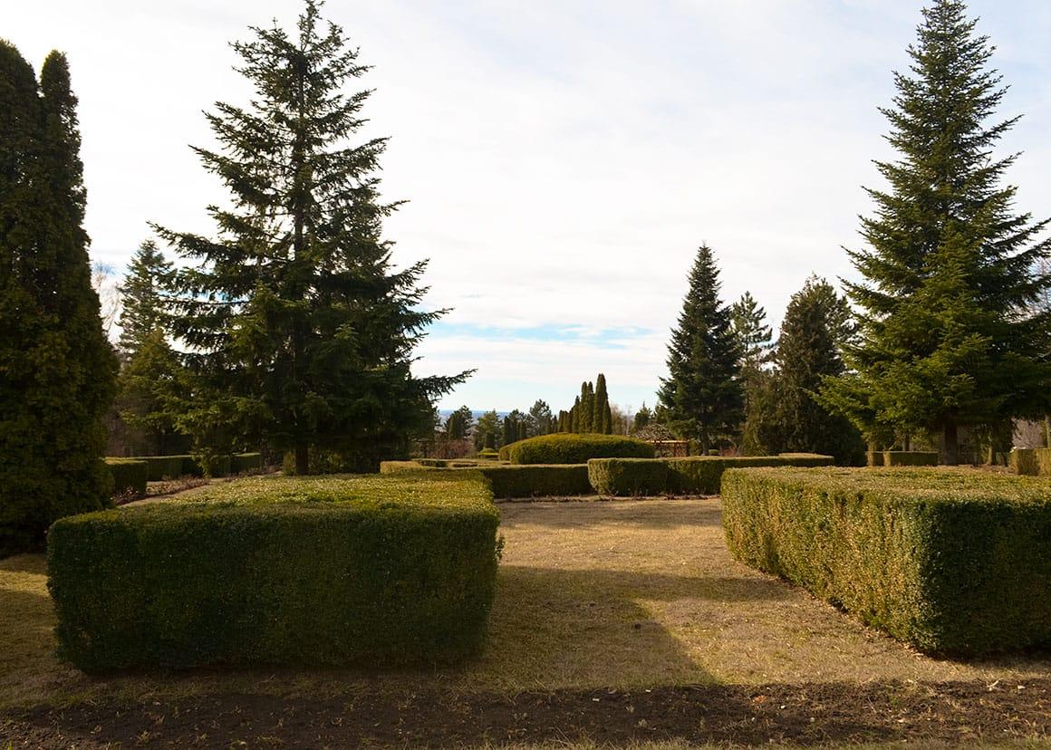 Iasi Botanical Garden